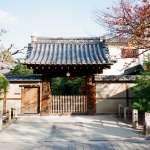 去京都玩不想搭車搭到錯亂,就騎單車吧!內行人公開最完美路線,悠閒踏遍7大景點