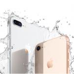 iPhone8帶動需求!外銷連13紅 創同期新高