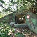 打造碉堡公園 桃園雙連坡營地綠美化開工