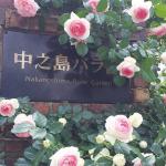 大阪最古老的百年公園!中之島附近5景點,人氣No1玫瑰園值得你排上半天行程!