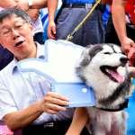 毛小孩有福了!台北市第二座狗運動公園正式啟用