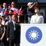 民間國慶大會滿場國旗 洪秀柱暗諷蘇嘉全:不像某人說「放在心裡就好」