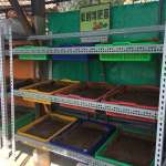 印度藍蚯蚓代工將廚餘變黑金 中市環保局開班授課
