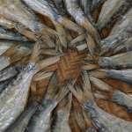 「鹹魚翻身了」?中國式鹹魚被列入致癌物!癌症專家怎麼說