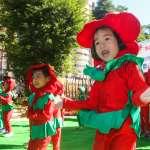 5歲幼兒免學費補助 托育預算等同補貼私立幼托