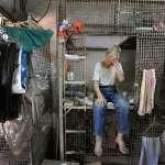 香港生活能有多逼人?高溫悶熱、蟑螂肆虐的籠子租人住,居民淚訴被政府遺棄的悲哀…
