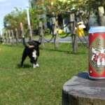 春節最應景啤酒來了!狗年圍爐喝這罐「汪汪旺」!