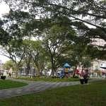 護樹團體批把大樹變草皮 高市府:打破森林化迷思走向永續生態公園
