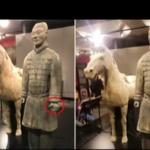 價值1.3億兵馬俑在美展覽 拇指竟被折斷、偷走