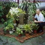 阮慶岳專欄:花園