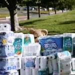 衛生紙要漲價啦!量販通路業者:最高可能漲三成,買一串要多噴掉一個便當的錢