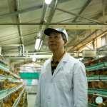 為何香港禽流感防疫水平世界一流,台灣卻做不到?竟是因為香港人有這種特殊喜好…