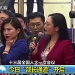 北京兩會觀察》兩會記者爆笑大全!不只藍衣女記者不屑表情包 麥克風拿反照樣問(有影片)