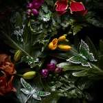 白翡與綠翠的派對 一場魔幻的【仲夏夜之夢】 JADEGIA玉世家夏季翡翠珠寶系列 遇見森林裡的喜樂翩翩