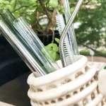誰說禁塑膠吸管,喝珍奶就只能用湯匙?盤點8種材質環保吸管,其中這種還能吃下肚!