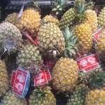 媒體指香蕉鳳梨產銷崩盤 陳吉仲籲更正:對農民沒好處