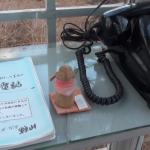 拿起這支電話,就可以打給亡者…日本「風中電話」療癒無數思念過世親友的心