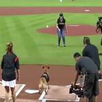 MLB》馬林魚開球嘉賓,狗狗都「接」得比人好