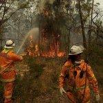 澳洲野火燎原 進入緊急狀態