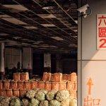 蔬果交易量占全國超過1/4 台北農產運銷「喊水會結凍」