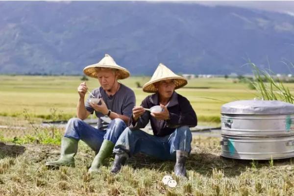 台灣筆記》農夫山泉有點田 跟著蔣勳去作田