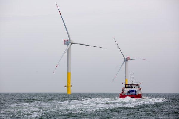 當風電遇上生態…