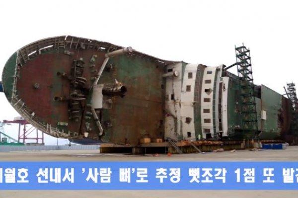世越號船難判決出爐》政府應對不力、船員讓民眾原地等死 首爾地院裁定:政府和營運商應賠償罹難者一人2億元