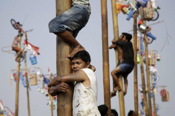 你不知道的印尼國慶活動!爬檳榔樹搶獎品竟與荷蘭人有關!