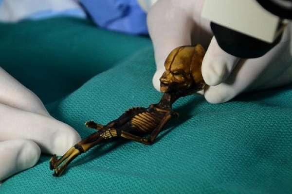 這具智利木乃伊是外星人嗎?身長僅15公分、比正常人類少了2對肋骨—科學家首度揭開「亞塔木乃伊」的心碎故事!