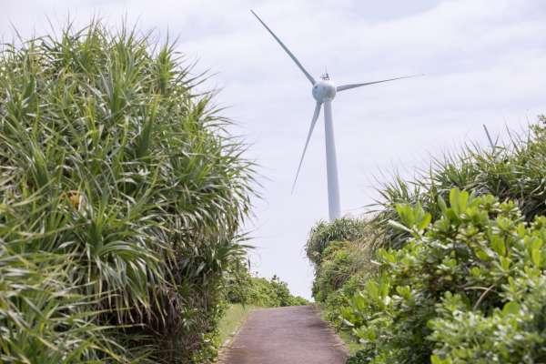 寫文批評離岸風電,卻被罵「看衰台灣」他教離岸風電廠商這3招,穩定產業發展