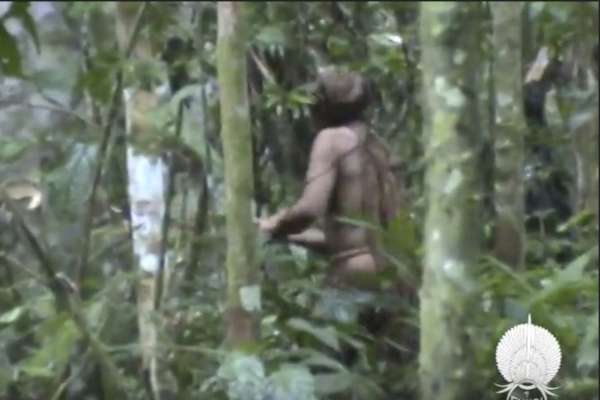 地表最孤獨男子》部落族人全遭殺害,亞馬遜叢林獨活22年的「洞穴原住民」現身!