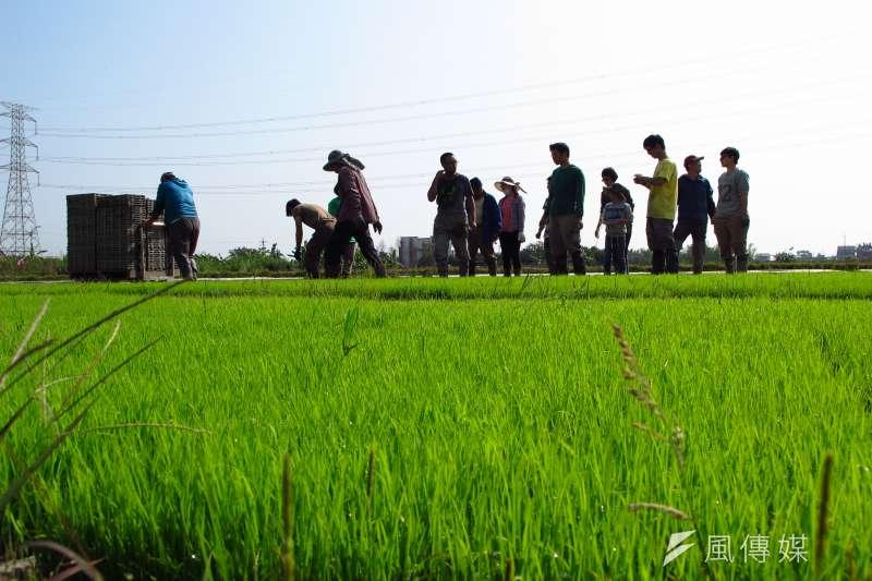 台灣政府並沒有妥善照顧農村,沒有健全的產銷體制,沒有完善的社會福利,沒有妥善的退休制度(吳佳玲攝)