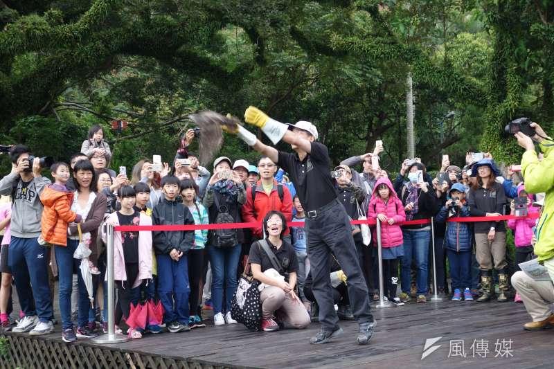由台北市動保處及台灣猛禽研究會共同主辦的「猛禽會秋季野放活動」4日中午在士林官邸登場。(資料照,台北市政府提供)