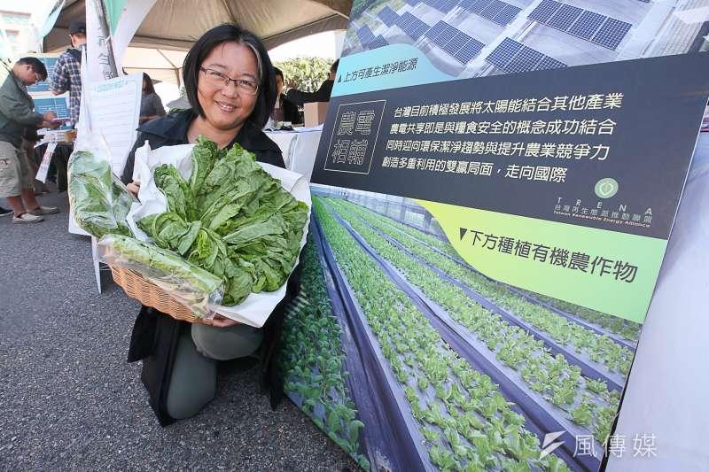 20180311-「面對核電代價,翻轉能源未來」311廢核大遊行,凱道並舉行翻轉能源未來展,推廣太陽能發電,展示板下種植菜蔬。(陳明仁攝)