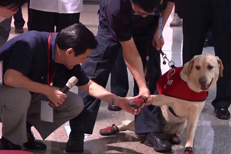 緝毒犬看似不甘願的與馬英九握手。(擷取自Youtube)