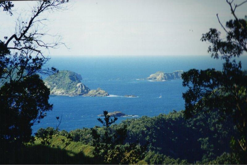 克馬德克群島最大島拉烏爾島(Raoul Island)(維基百科)