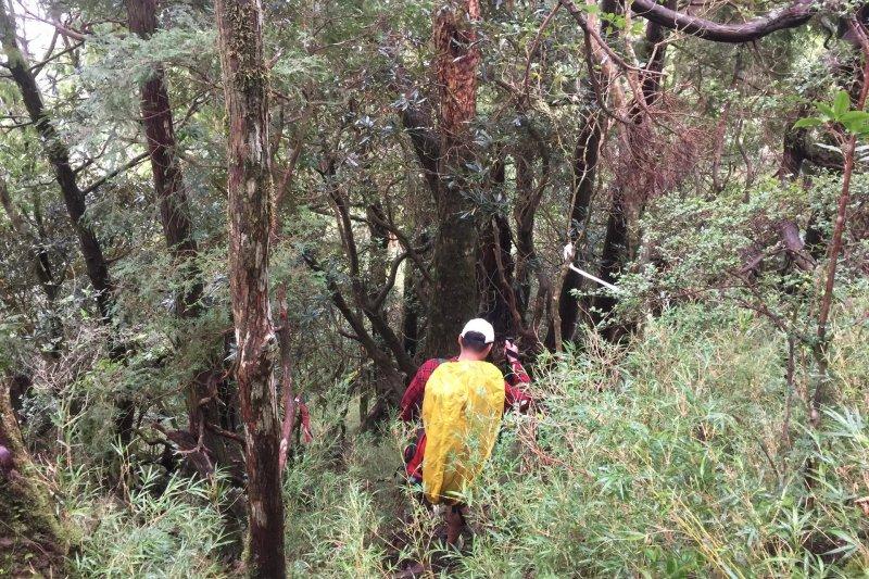 台中市一名19歲張姓登山客日前獨自攀爬中央山脈南三段傳不慎將帳篷燒毀,為避免失溫,因此報案求救,由直升機搭載下山送醫。圖為示意圖。(資料照,呂紹煒攝)