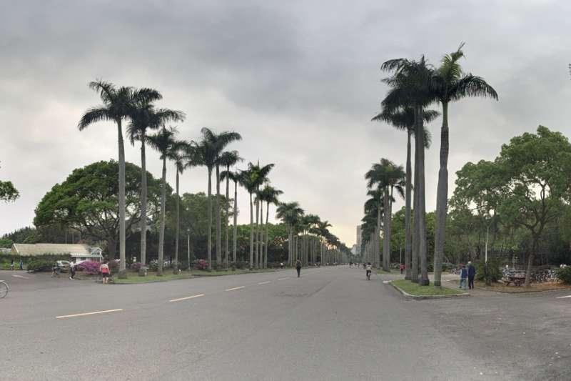 作者指出,現在的台大仍是台灣一流大學的龍頭老大,但經典色彩逐漸淡薄,傳奇故事愈來愈少,惟師生的學術成就日趨國際化。(資料照,呂紹煒攝)