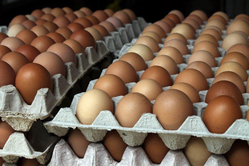 衛生福利部食品藥物管理署今(21)日表示,針對有蛋品驗出戴奧辛,目前已封存並啟動預防性下架,請民眾不用恐慌。(資料照,取自flowcomm@Flickr)