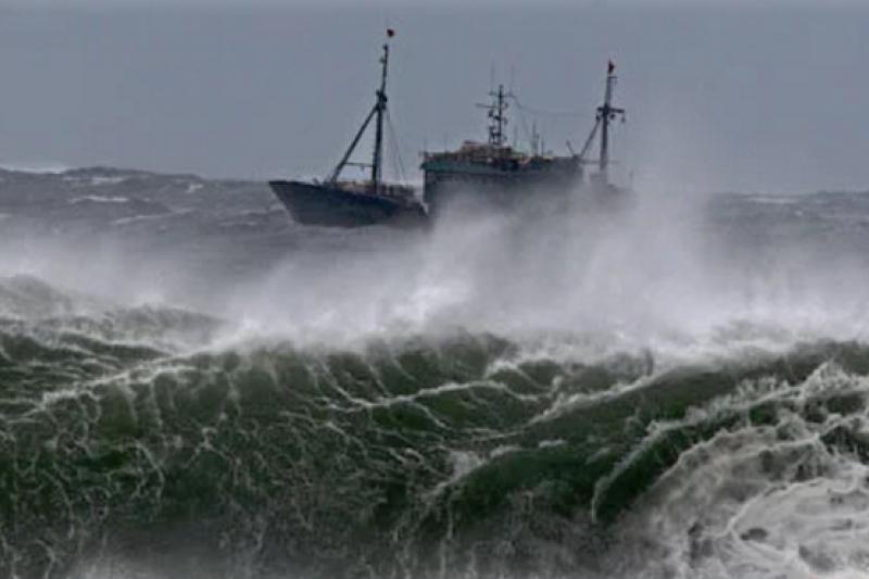 全球漁業資源枯竭危機,台灣漁業危機四伏。(美聯社)