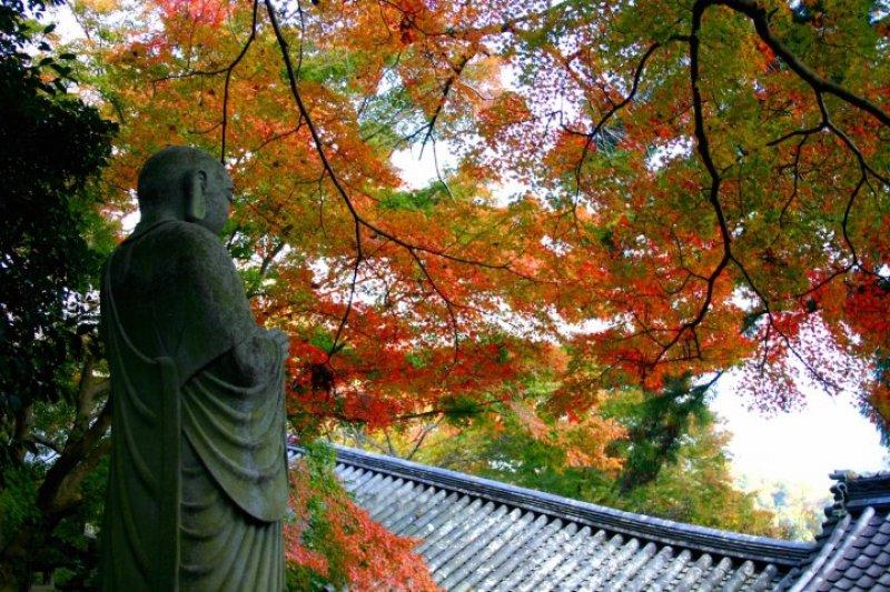 喜歡日本神社佛閣、自然風景的朋友千萬別錯過!(圖/MATCHA)
