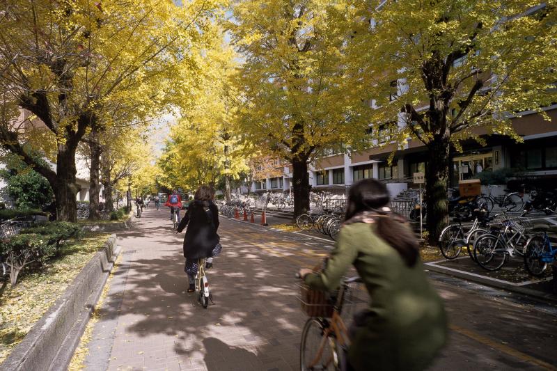 到日本交換,除了學習、體驗生活、還有...?(圖/Lordcolus@flickr)(非慶應大學)