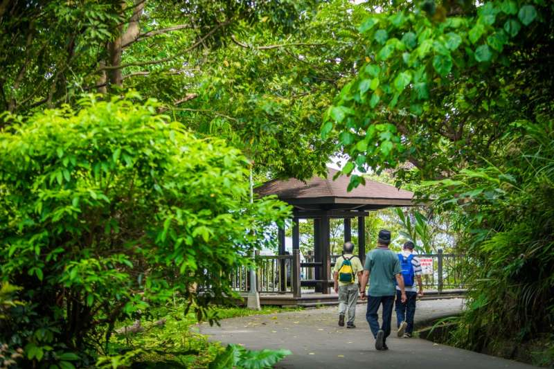 占地17公頃的義學坑自然生態公園,是泰山的綠色之肺(圖/合登上豪提供)