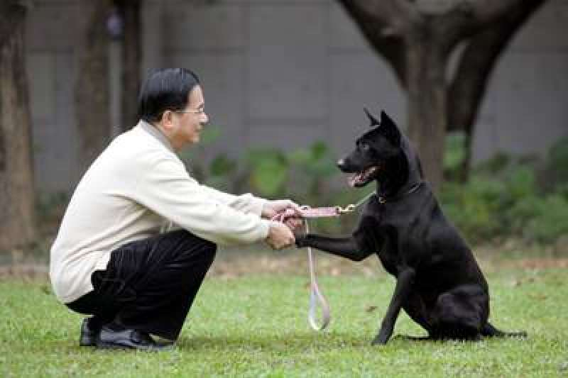 前總統陳水扁向支持者發出line訊息,以「阿扁」和勇哥虛擬對話文,暗諷仍未特赦扁的總統蔡英文。(資料照,取自總統府)