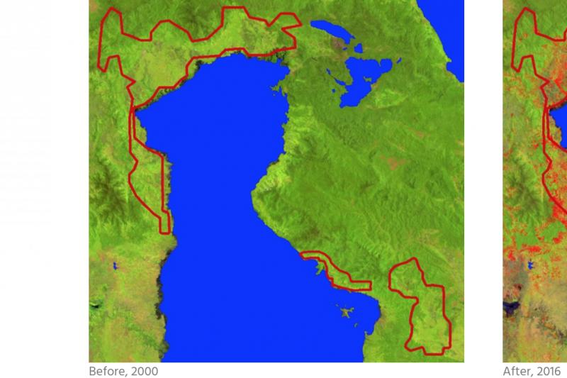 印尼蘇拉威西島(Sulawesi)盛產可可,左圖為2000年,右圖為2016年。紅色區域為消失的雨林。(截自Mighty Earth)