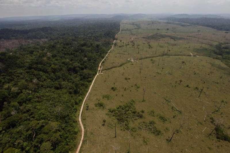 全球巧克力產業正在毀滅西非的熱帶雨林,象牙海岸和迦納是可可豆供應大國,他們同時也是雨林墾伐的最大受害者,象牙海岸正以其他非洲國家無法比擬的速度失去雨林。(美聯社)