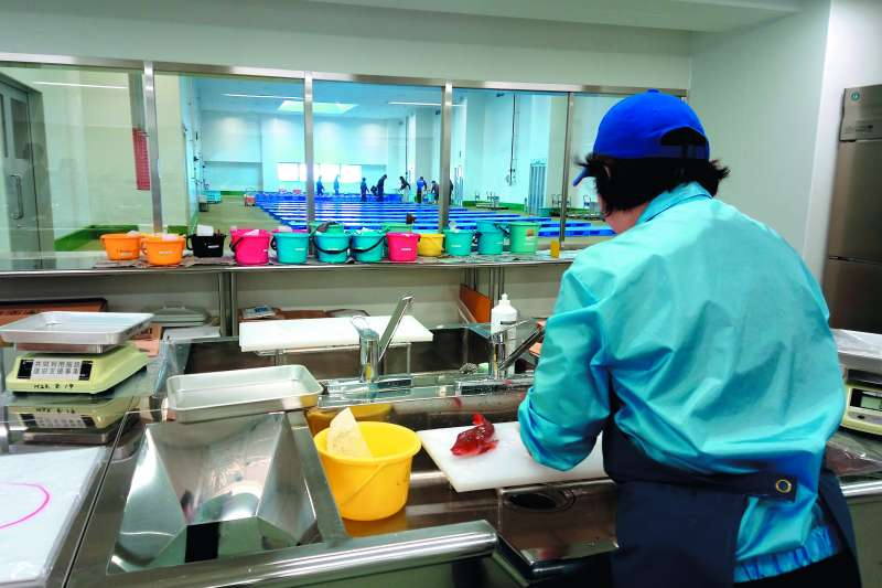 福島縣小名濱漁港的魚市場檢測室,大大小小不同顏色的桶裡裝著各種海產,工作人員會當場檢測樣本。(潘彥瑞攝)