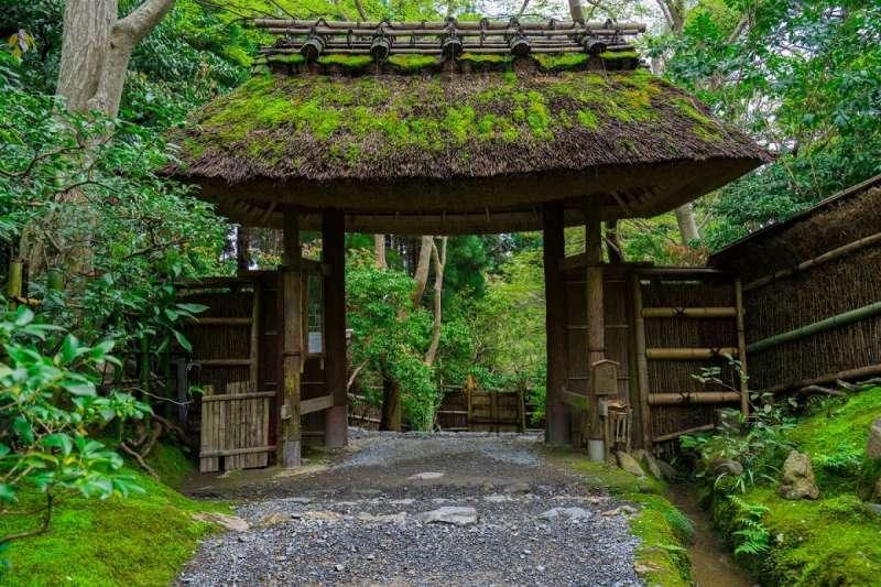 樸實的草庵被竹林和楓樹圍繞。(圖/ZEKKEI Japan)