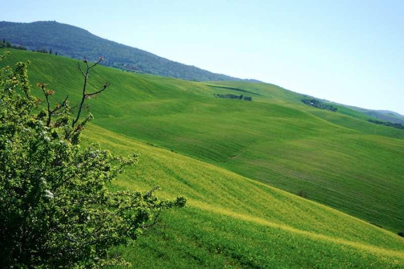 翁布里亞大區(Umbria)景色。(曾廣儀攝)