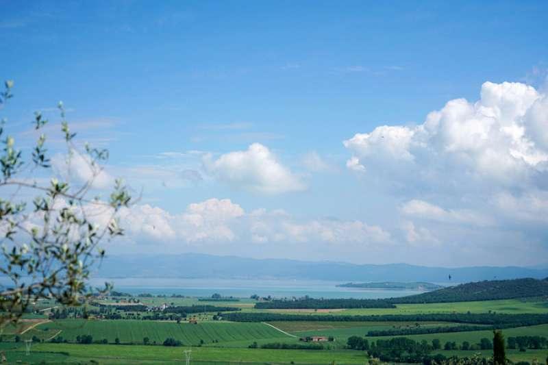 從小鎮眺望的景觀。(曾廣儀攝)